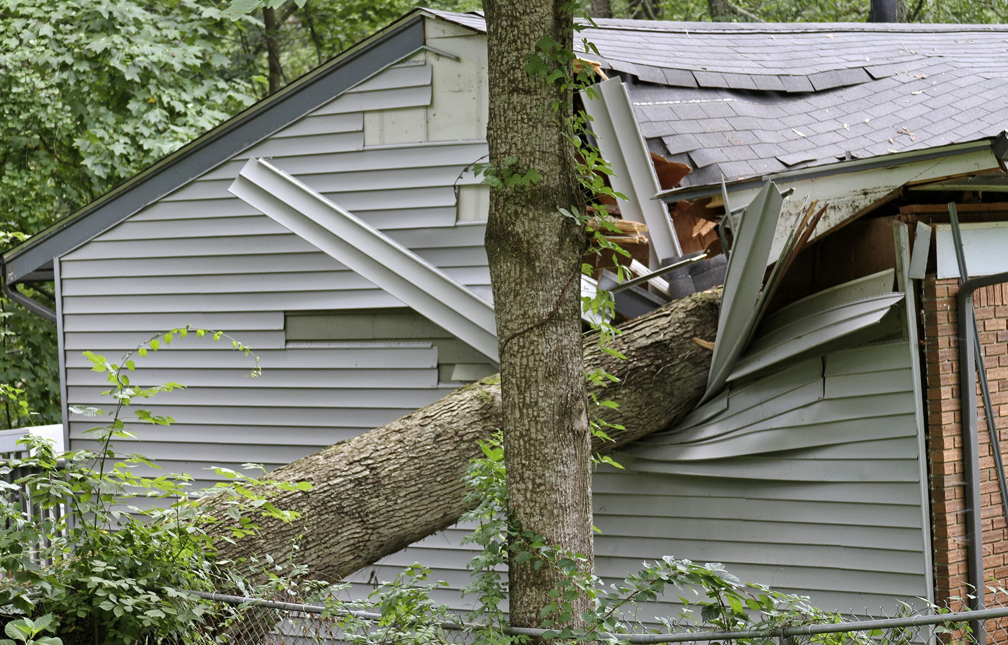 A large tree falls on a home and causes serious roofing, siding and structural damage.